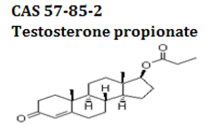 Testosterone propionate powder cas 57-85-2